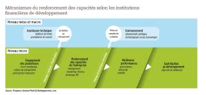 Mécanismes du renforcement des capacités selon les institutions financières de développement