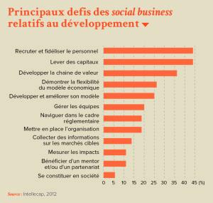 Principaux defis des social business relatifs au développement