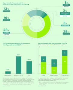 Répartition de l'assurance non vie par branche dans 15 pays africains* (2014)