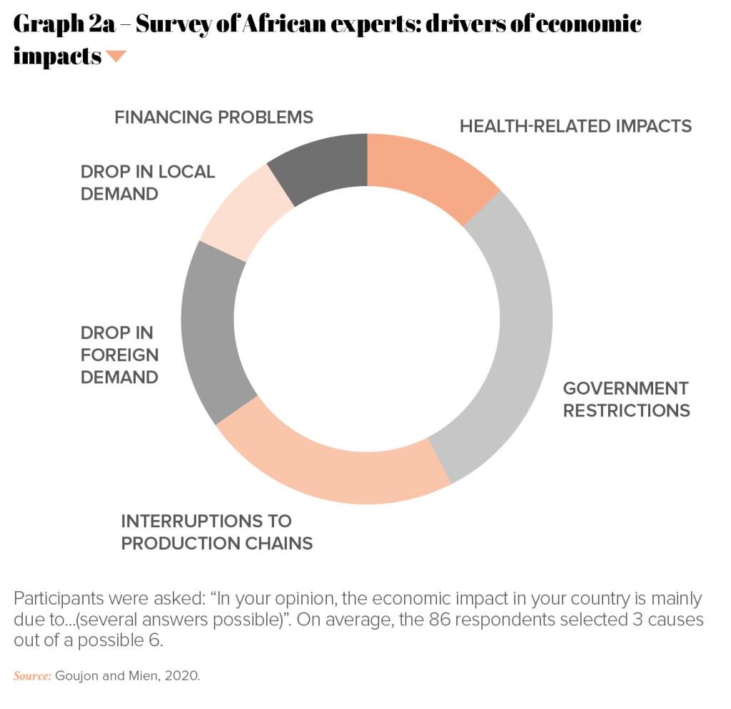 PRO-Revue n°34-UK-P39-Graph 2a – Survey of African experts- drivers of economic impacts copie