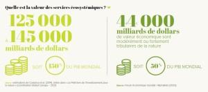 Quelle est la valeur des services écosystémiques ?