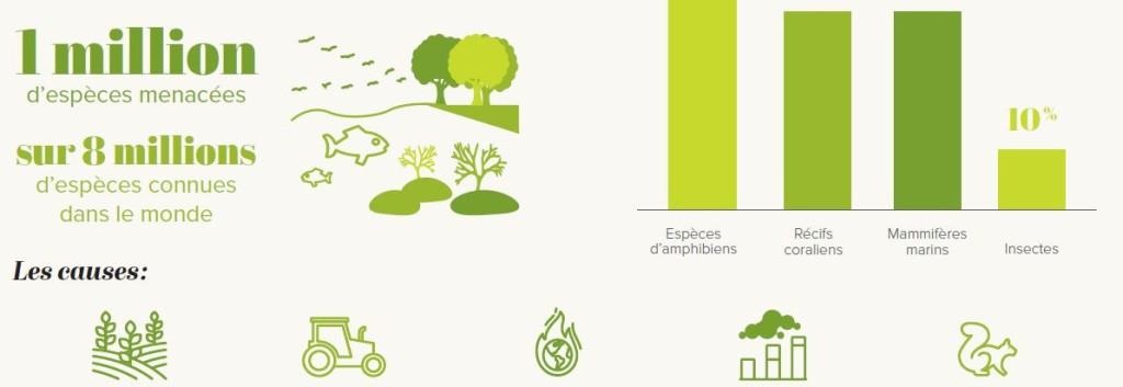 aller a Perte de la biodiversité : un état des lieux préoccupant – Chiffres clés