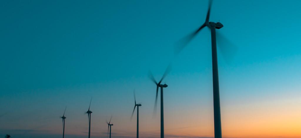 aller a Recommandations pour la prise en compte de la biodiversité par le secteur de l'éolien dans les pays émergents