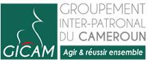 logo_06_2018_GICAM