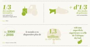 Disparition de la biodiversité